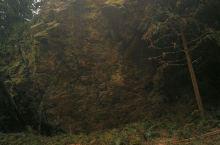 二郎神开石,水帘洞瀑布,绿水竹水库,三合巷窗花,绿竹亭,三县桥!美丽的风景尽收眼底!