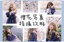 占星猫与樱花的春日之旅 | 樱花人物写真拍摄技巧  取景: 湖南省森林植物园 -樱花园 地址: 长沙