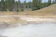 多姿多彩的黄石湖 在很久以前去过美国的黄石公园,再一次去的时候就专门来玩黄石湖,黄石湖给人的感觉很奇