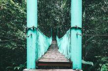 宛如世外桃源般的天然氧吧  ●清澈湖水    来到这处公园,总有种我们来到世外桃源感受小桥流水的美好
