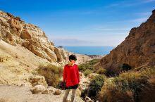 死海边,马萨达遗址以北几公里,有这么一片绿洲,这就是艾茵盖迪自然保护区,虽然不大,比不上很多地方的名