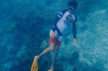 突然想起很久没浮潜了,水下世界真的很神奇,看着幽蓝的海底,鱼群在自己身边游过的感觉真的很棒!