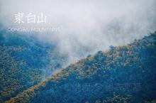 东白山,遇上大雾,山上植被都挂上了冰凌。