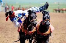呼伦贝尔大草原包车游印象最深刻的地方-黑山头骑马,对于我来说这是一次充满刺激的体验!首先骑手精湛的表