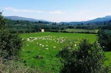 风吹草低见牛羊。