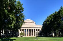 MIT的草坪不干净。。。