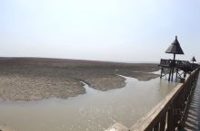 红海滩?泥沙滩?保护湿地保护生态迫在眉睫呀