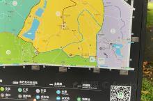 因为邓小平同志塑像,因此莲花山也成了深圳重要的打卡景点,单从爬山角度,莲花山是个很不错的休闲之地,空