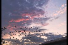 北京金秋不容错过的赏夕阳好去处 罗马湖   【景点攻略】 详细地址:北京顺义罗马湖湿地  交通攻略: