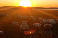 夕阳洒满大草原 霍林河的西部和北部紧靠着锡林郭勒盟东乌旗的乌拉盖,被称作天堂草原,是《狼图腾》的故乡