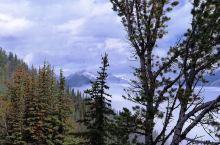 这是去年5月中旬在班夫的硫磺山顶拍到的美图,云海缥缈。可以跟黄山云海相媲美了。  硫磺山海拔2450
