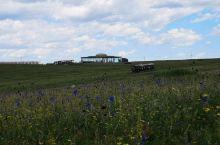 黄花沟之行,最让我们惊喜的是草原小火车。     这里的草原,青青触云脚,绵延到天边。风车在花海和