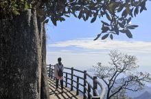走在西海岸悬崖绝壁的栈道上,每一次转弯,都恍如步入了云端。