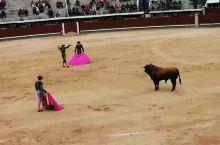 西班牙马德里竞技场。杀牛取乐,80欧。一场杀六头,一共两钟头,重复六遍, 马德里拉斯文塔斯斗牛场