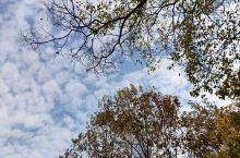 寂静的秋日