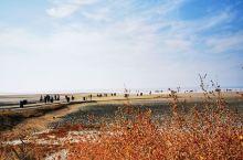 土耳其之旅(十八)兹湖位于安纳托利亚高原中部,是土耳其内陆最大的咸水湖、土耳其的第二大湖,也是土耳其