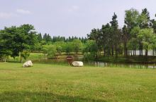 东平国家森林公园,比较适合去散步