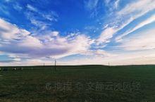 平均海拔1700m的希拉穆仁 第一次尝试在草原上骑马 第一次看到真实的蒙古包 第一次觉得天边或许就是