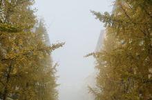 印山公园  【景点攻略】 详细地址:  交通攻略:  开放时间:  门票价格:  亮点特色:  小T