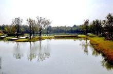 南京汤山矿坑公园         随着城市面积不断的扩大以及基础工业的搬迁,许多原本处于郊县或郊区的