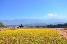 德宏是傣族景颇族自治州,靠近边境的一个小镇,很多民族汇聚在一起,各种美食,山青水秀,好客的名族之地,