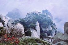 春节去天柱山,观赏峰峦雄奇、云海仙境,如遇到下雪,更有雾凇、冰凌、雪霁等奇观。若是想探究一下天柱山的