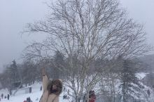 下雪了,我们一起踩雪,一起堆雪人,一个打雪仗吧,看着雪越下越大,雪花一片片落下来,在阳光的普照下晶莹
