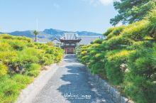 春天去旅行系列~与世无争的 小豆岛   小豆岛是濑户内海的第二大岛,是日本橄榄的发源地,酱油酿造也很