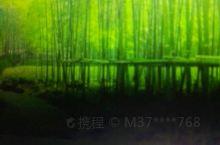 相思林景区位于庐江汤池镇,