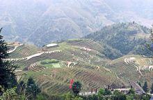 龙脊梯田,是勤劳的广西人民创造的仙境。