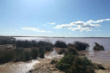 西班牙网红景点,瓦伦西亚大区粉色盐湖,湖水由于水中藻类繁殖而呈现漂亮的粉红颜色