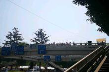 仙台花火大会前夕 大家都已经准备就绪 各种活动安排上了 西公园 广濑川桥 仙台城走起!!!