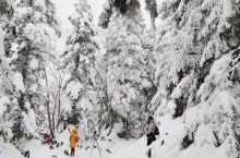 新穗榄车上到山顶,积雪好美。
