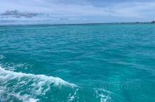 给你们看看军舰岛的海底世界hahah
