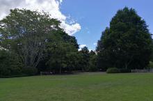 汉密尔顿花园之四