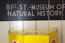 自然历史博物馆 磁铁设计的不错就是太贵