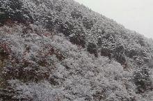 镇安县下雪了!!