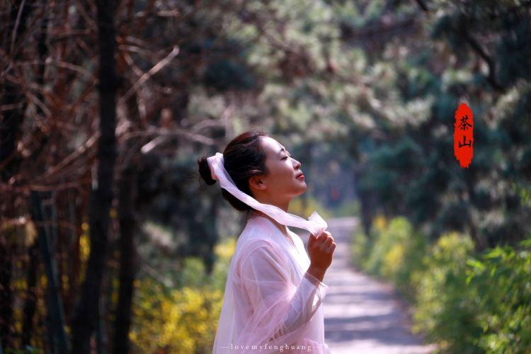 Linyi Chashan Scenic Resort2