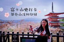 【富士山打卡地|追逐樱花脚步看神山】 在这看樱花和富士山简直绝了!去的时候刚好赶上了樱吹雪,大片大片
