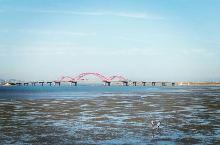 去龙湖领导力中心听讲座,顺便又走到东边看看养马岛大桥,走到北边看看北中国海公园。路上的桃子杏子满枝头