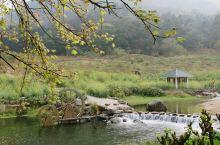 从化是广州的后花园,95%以上的地方都还是原始的山林风貌。夏天啖荔枝,冬天泡温泉,是打卡从化的最好方