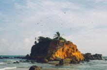 蓝色的海,粉色的天,原始的海滩最美的你  美蕊沙海滩|位置信息:Mirissa Beach,Miri