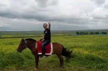 内蒙古来骑马