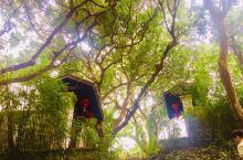 这里的温泉度假村很好 热带雨林结合七仙岭的温泉 感觉真好 保亭离三亚 乐东都不远 平时有酒店的班车接