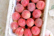 每年的6月份,砀山县果园场的油桃黄桃,早苹果,就会陆续上市,很不错,看着不错,吃起来也超级好吃