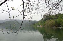 超级超级美的地方,斯洛文尼亚不可错过的景点!虽然交通不是特别方便,从卢布尔雅那坐大巴可达,下车以后迷