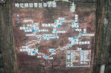 哈尼梯田,是云南一个知名景点。 但是去之前,有当地人告诉我不要预期太高,不去遗憾,去了更遗憾。 从昆