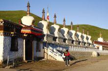 甘南风光  美丽的若尔盖草原,巴颜喀拉山,虔诚的藏族人民。还有那不怕我的鸟,还真有人来鸟不惊。