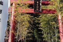 热海地区的神社就以来宫神社最出名,算是当地的信仰中心,走过来大概30分钟左右,也可以搭公交到来宫车站