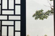 清早起来,推开这扇窗,映入你眼帘的是云雾缭绕大山 ,梯田 ,空气中弥漫着淡淡的清香。这种沉醉的留恋不